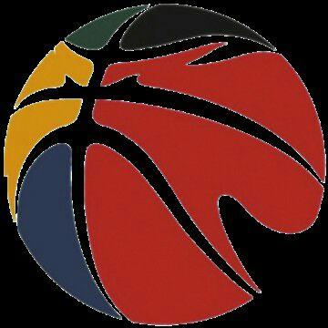 บาสฯลีกอันดับหนึ่งของจีน CBA (Chinese Basketball Association)